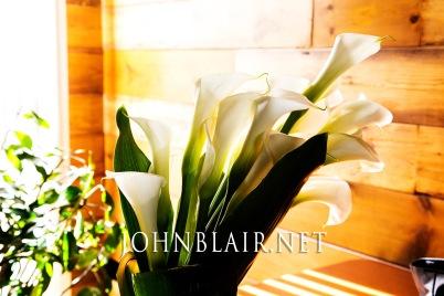 June Springfield Wedding Jillian and Eric 0011